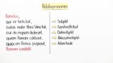 Relativsätze – Einführung