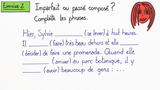 Imparfait – Gebrauch im Text (Übungsvideo)