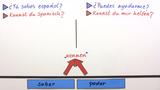 Saber und poder - Übungsvideo
