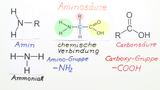 Aminosäuren - Struktur und Eigenschaften