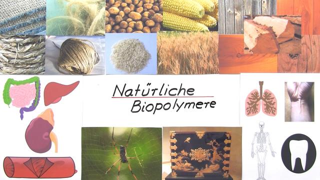 Natürliche Biopolymere