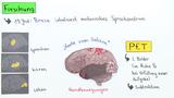 MRT und PET - Einblick in den Körper