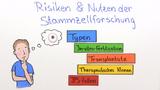 Stammzellen – Risiken und Nutzen