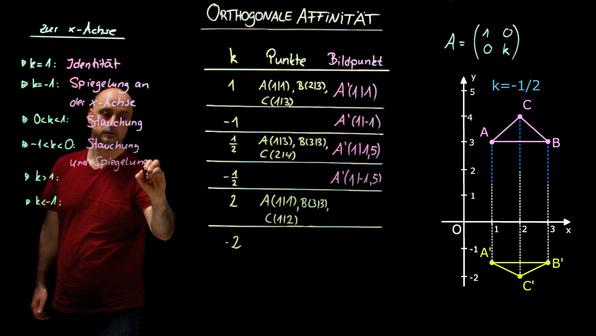 19805 orthogonale affinit%c3%a4t