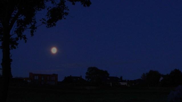 Mitternachtsformel (abc-Formel) – Übung