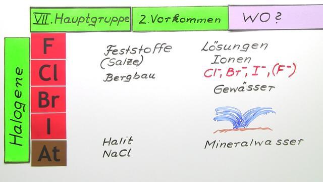 VII. Hauptgruppe – Vorkommen