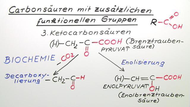 Carbonsäuren mit zusätzlichen funktionellen Gruppen