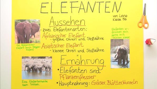 Vorschaubild plakat gestalten