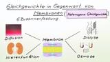 Gleichgewichte in Gegenwart von Membranen
