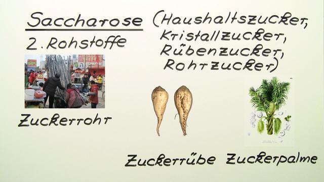 Saccharose und Maltose
