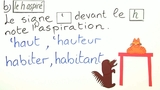 Besonderheiten bei Konsonanten: h