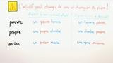 Adjektive – wechselnde Bedeutung bei Vor- und Nachstellung