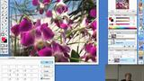 Teil 35: Demonstration verschiedener Filter in Photoshop
