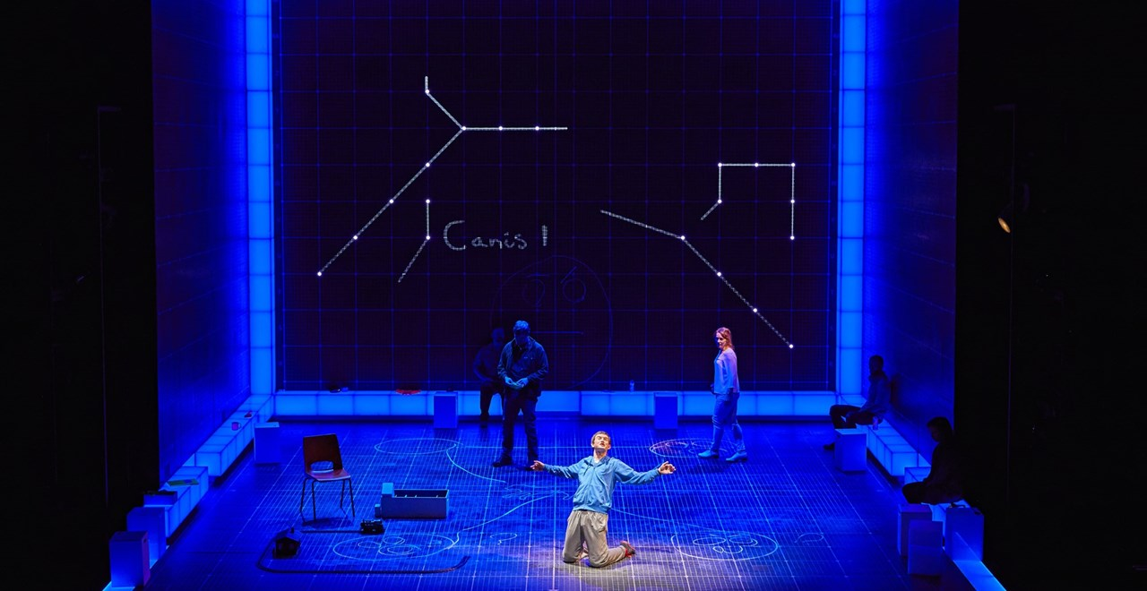 The Curious Incident Of The Dog In The Night Time Theatre Royal