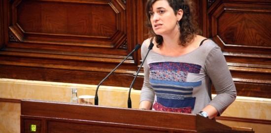 Sara Vilà, en una intervenció al parlament