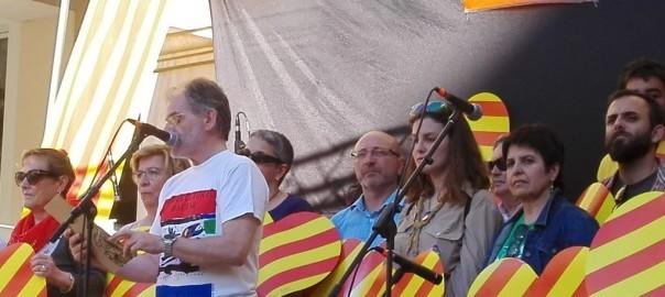 Diada per a llengua 2016 Mallorca