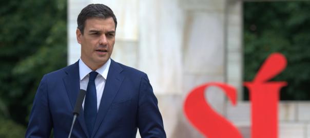 El candidat del PSOE, Pedro Sánchez (fotografia: ACN).