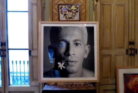 Un altre fragment de la casa del fotògraf, amb la fotografia 'El gessamí (Mussa), 1999.