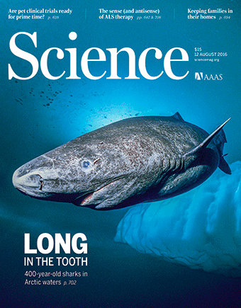 La portada de la revista Science sobre el tauró de Groenlàndia