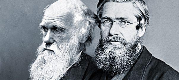L'essència de la proposta de Charles Darwin (a l'esquerra) i Alfred R. Wallace (a la dreta) era que no s'havia d'entendre els éssers vius com a creacions «perfectes» construïdes acuradament per una autoritat divina, sinó com el producte de processos completament naturals. / Mètode