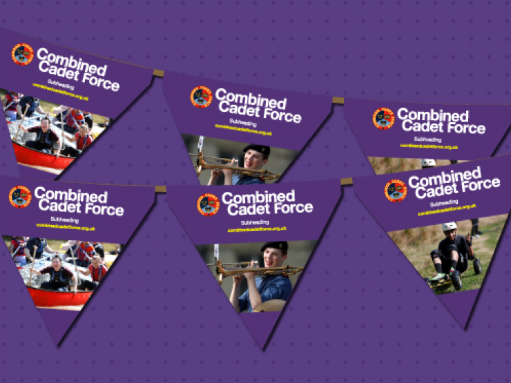 Ccf Website Main Bunting