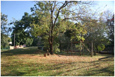 Arbopark