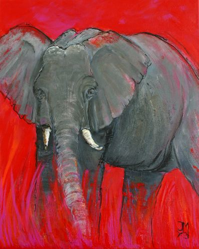 Olifant in rood II