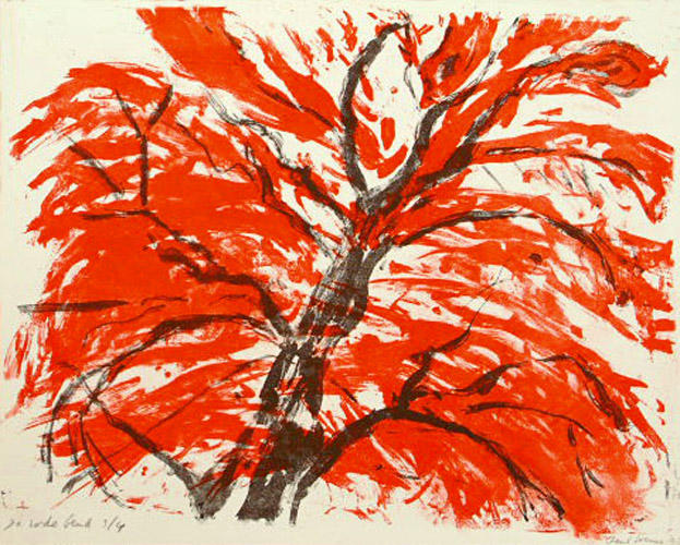 Red beech trees, grfic art, litho in color