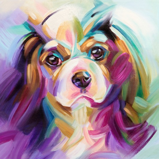 Colorful Cavalier