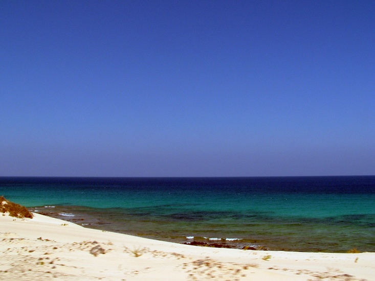 Beach of Fuerteventura