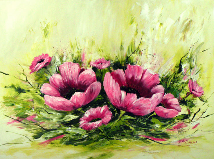 Roze Papavers