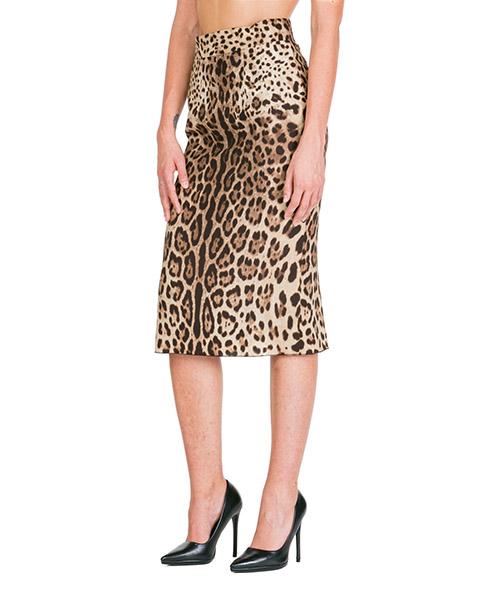 Maxi skirt Dolce&Gabbana F4BMQTFSADDHY13M marrone