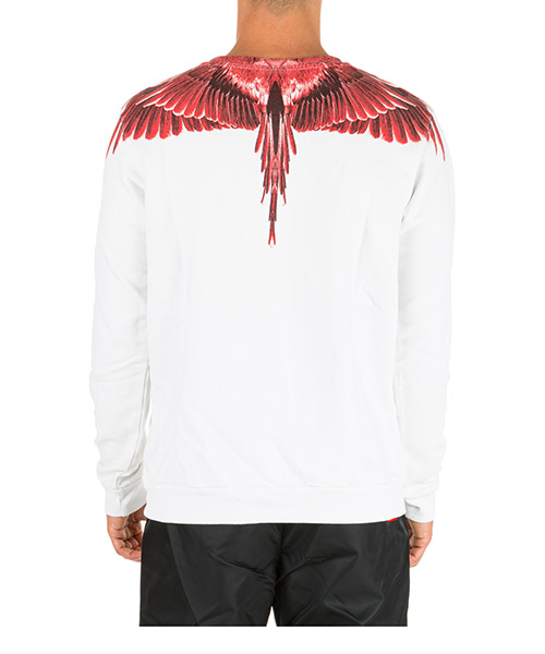 Men's sweatshirt sweat  wings secondary image