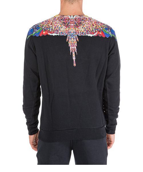 Felpa uomo  multicolor wings secondary image