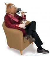قناع الحصان