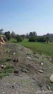 ارض زراعية للبيع بوادي عياء بللسمر