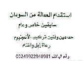 استقدام العمالة الجاهزة من السودان في اقل من 15يوم فقط