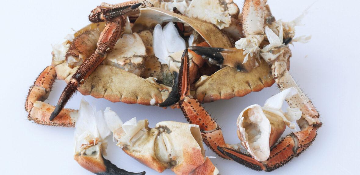 Prepare a cooked crab
