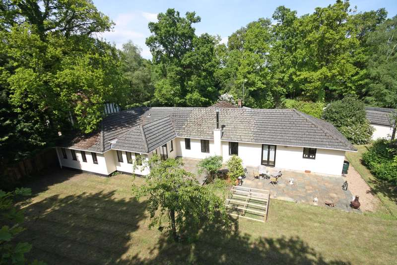 4 Bedrooms Detached Bungalow for sale in Lake View Road, Furnace Wood, East Grinstead, West Sussex, RH19