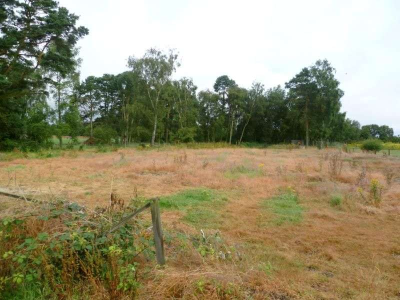 Land Commercial for sale in The Chase, Fearn, Tain, IV20