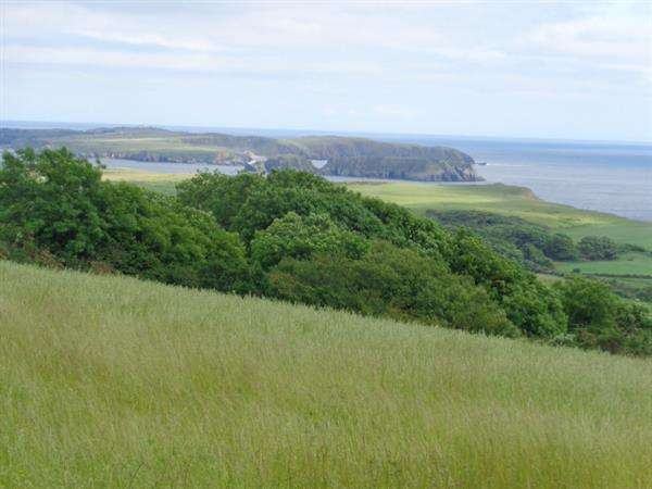Land Commercial for sale in Approx 26.3 Acres (10.6 Hectares) The Ridgeway,