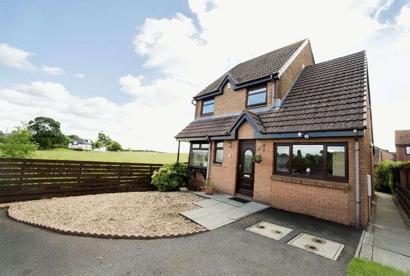 4 Bedrooms Detached House for sale in Gryfebank Close, Johnstone
