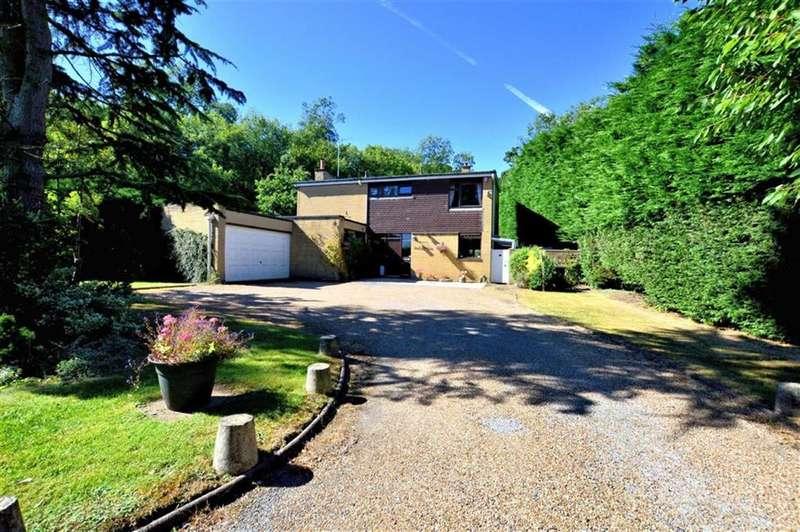 5 Bedrooms Property for sale in Woodside, Thornwood