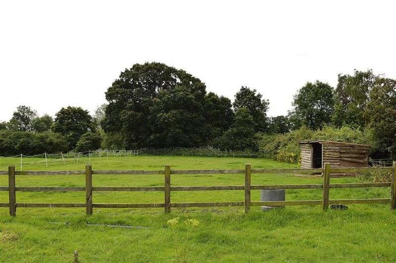 Land Commercial for sale in Cley Lane Saham Toney
