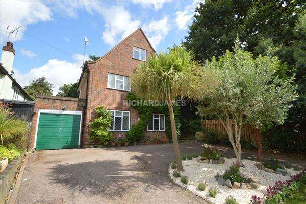 4 Bedrooms Detached House for sale in Tudor Close, London
