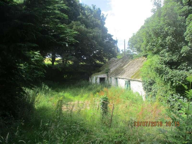 Detached House for sale in Tyddyn Rhydd, Pentre Berw, Gaerwen