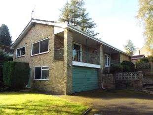 4 Bedrooms Bungalow for sale in Roffes Lane, Chaldon, Caterham, Surrey