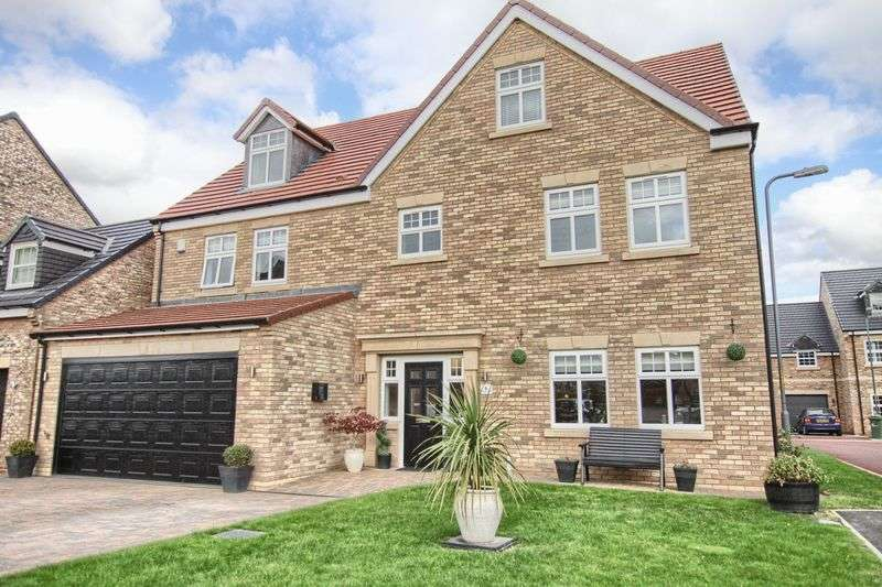 6 Bedrooms Detached House for sale in Vinovia Place, Ingleby Barwick