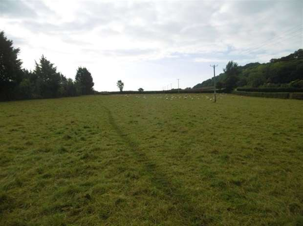 Land Commercial for sale in Ham Lane, Compton Dundon, Somerton