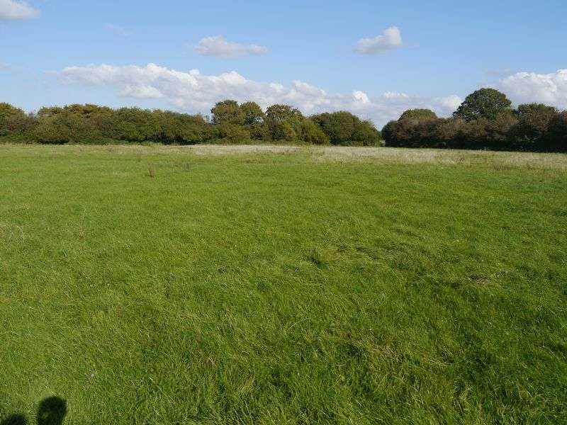 Detached House for sale in Paddock at Moor Road, Banwell, North Somerset - For Sale by Auction